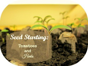 Seed Starting - Title