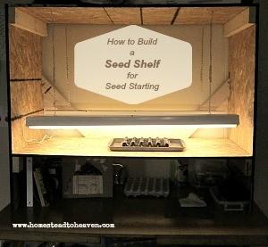seed shelf pic