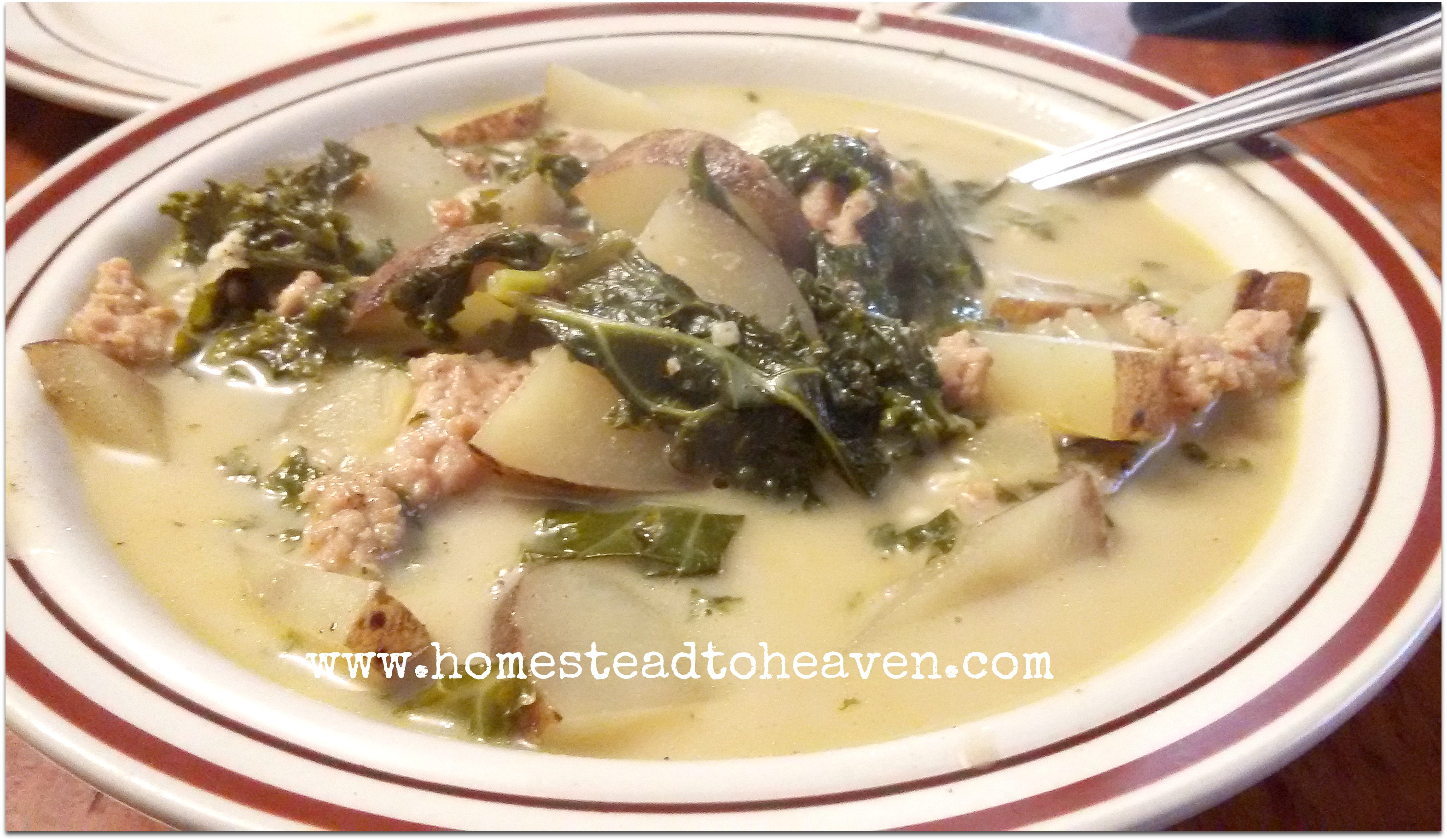 Homemade Crock-pot Chicken Broth - Homestead to Heaven
