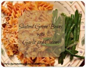 Recipe: Sauteed Green Beans with Garlic and Onion!