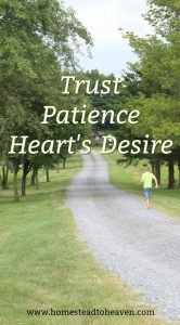 Trust and Patience and Heart's Desire