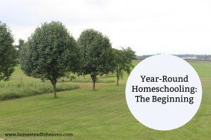 """""""Year-Round"""" Homeschooling: The Beginning"""