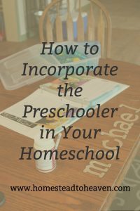 How We Incorporate the Preschooler in Our Homeschool