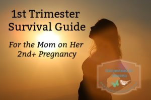 1st trimester 2nd time mom