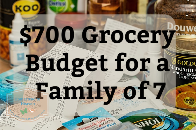 $700 Grocery Budget
