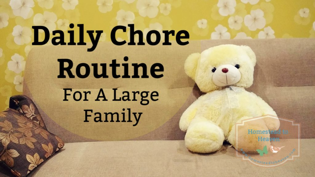 daily chore routine for a large family
