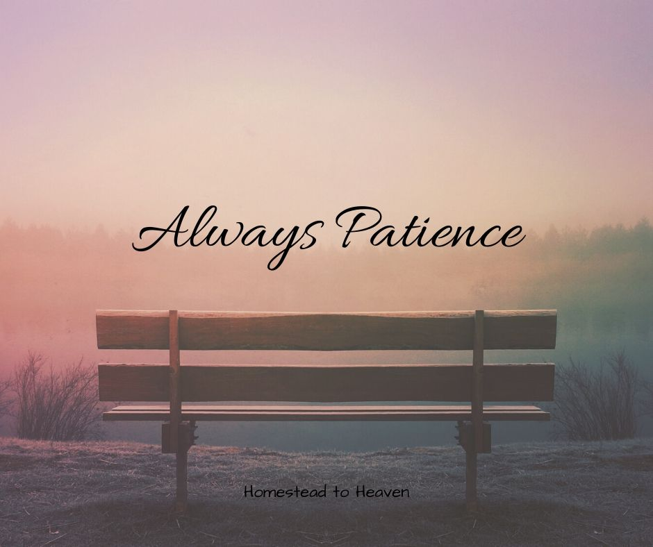 Always Patience